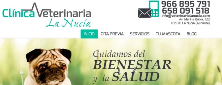 Montar web para veterinarios